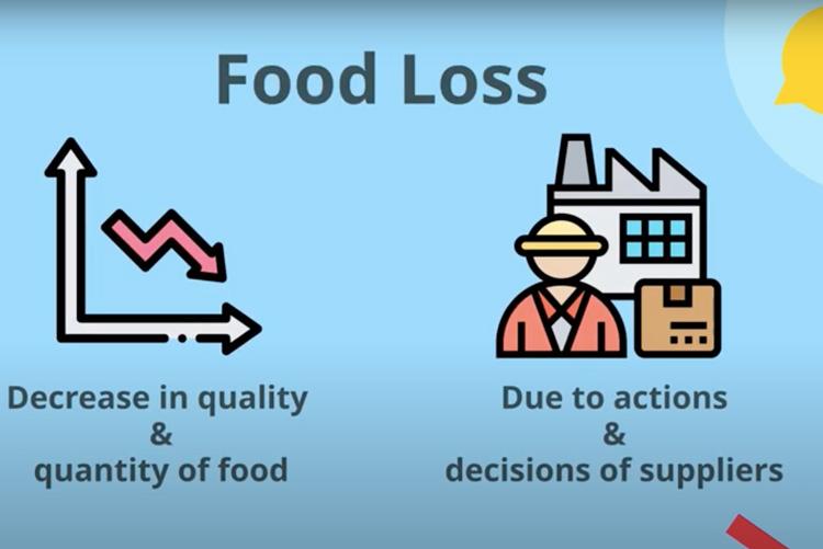 Food Loss explained