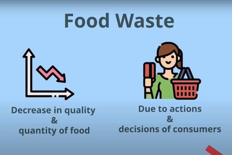 Food Waste explained