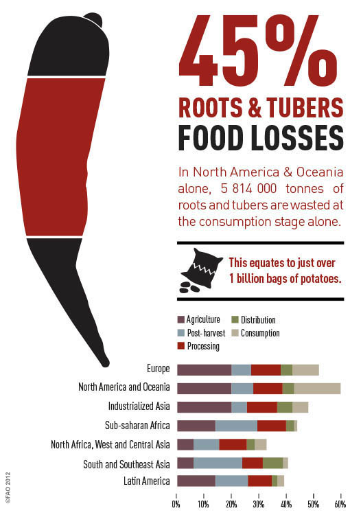 Roots & Tubers Loss by UNFAO